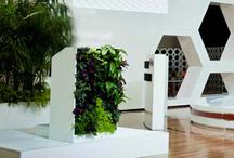 vertical garden wall / by Pauline Grace Cudmore