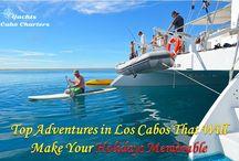 Catamaran Charter Cabo San Lucas