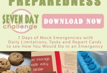 7 Day Challenge / Test your preparedness with mock emergencies to see how you would do in case of certain disasters / by Food Storage Made Easy (Jodi and Julie)