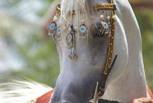 Arabian horse collar