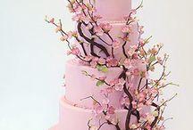 Taart / cake