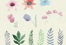 water flower paints