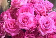 Çiçek / flowers
