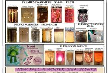Scentsy Fall/Winter 2014 / Fall /Winter Scentsy Products / by Jill Kennedy