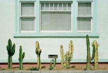 Visual Inspiration