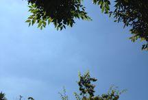 SKY PROP / Ohohoh. Lovely sky. ^^