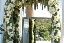 Weddings / by Beth Armsheimer