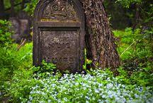 Bijzondere begraafplaatsen