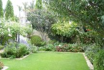 Garden design - north facing / Planting schemes for shaded areas.
