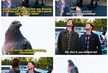 why I love supernatural