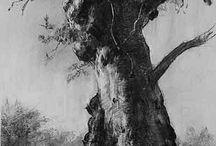 Kunstwerke (Tree Art)