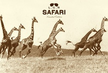 Safari Limited Edition