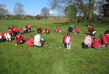 Bucket School Learning / A cheap and exciting way to take your science learning outdoors
