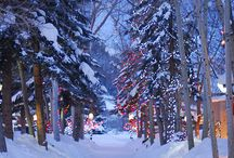 White Winters / Please share incredible images of Winter... / by Travelhost of Pikes Peak