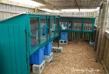 Rabbit Hutch Designs