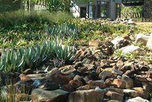 Brenton garden