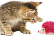 KONG KATTEN / Katten en hun baasjes kiezen voor de originele KONG en al onze andere favoriete speeltjes, omdat ze leuk zijn. KONG speeltjes blinken uit in kwaliteit, originaliteit, diversiteit, veiligheid en bieden waar voor hun geld. Deze speeltjes zijn als geen ander: niet zomaar een speeltje, maar een KONG.