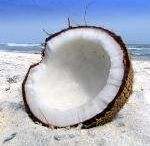 Coconut Oil... Tree of Life! / by Heather Riehle