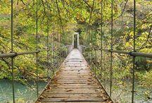 bridges / by Charlotte Downes