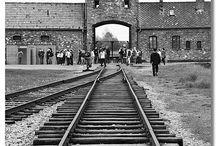 Repinning Holocaust / board