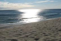 the beach / by Anna Pleasant