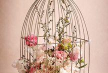 Fil de fer / cage à oiseaux