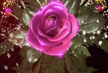 Judit csodás virágai képei Kitti Virág