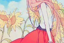 sunflower helena