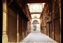 Descobrint Barcelona