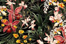 flower backdrop design