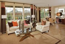 Amazing Spaces: Living/Great/Entertainment Rooms