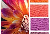Colour Ideas for leotards