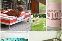 Pet beds and furniture