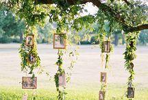 Wedding - Fantasy & Whymsical / Inspiration for Fantasy & Whimsical weddings