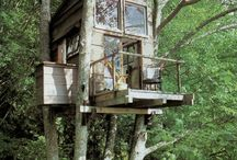 Living in the treetops / Tree houses / by Shawnna Abell