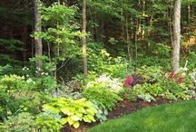 Gardening and yard ideas... / Play in the dirt!