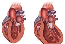 Cardiology / Cardiology, Heart Health and Heart Disease. / by Mayo Clinic