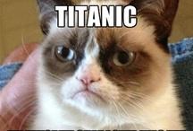 Grumpy Cat Greats