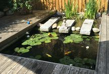 Garden pond / Pictures of graden ponds