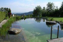 bio piscine
