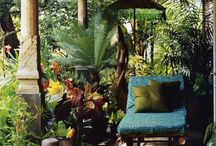 Garden / Garden ambience