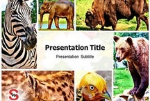 Animals PowerPoint Presentation / You can upload your Presentation and share with The World...