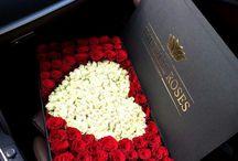 Flores^
