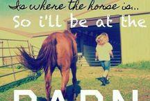 Pony girl stuff