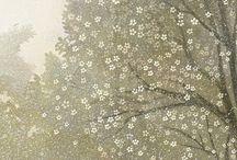 Cseresznye virágzás ufóknak