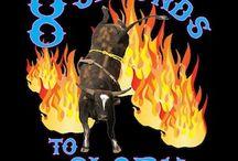 bulls / bull riding kills