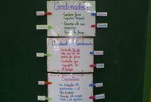 Competències Basiques