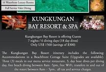 Dive Travel Specials