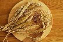 Brot: Getreide und andere Brotzutaten / Bilder aus der Natur und mit natürlichen Nahrungsmitteln...