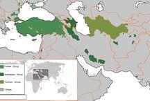 Tarihi Haritalar
